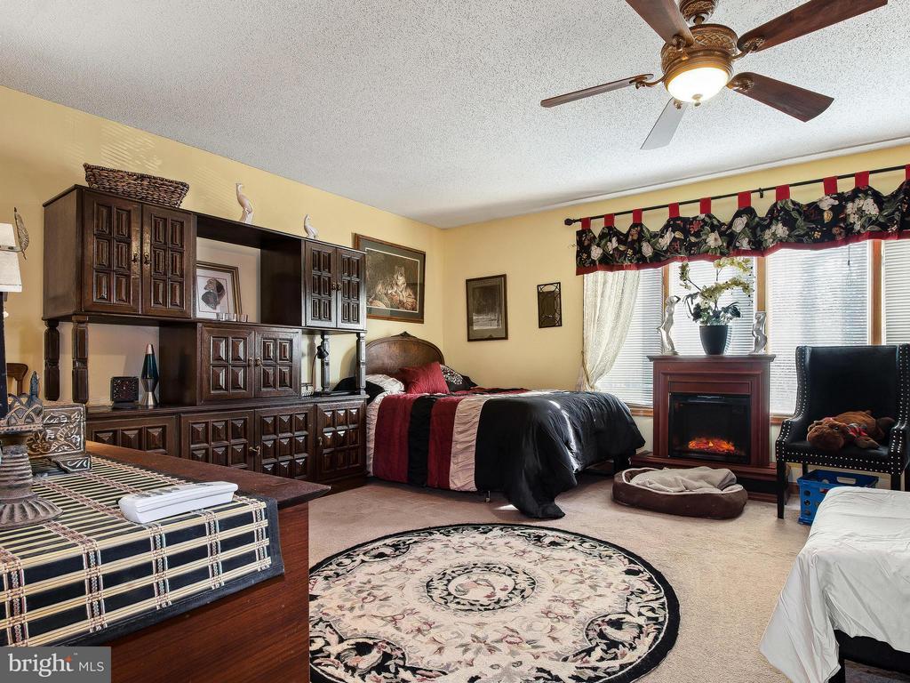 Bedroom (Master) - 9513 FLINT HILL CT, FREDERICKSBURG