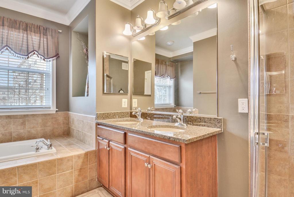 Dual Sink Vanity in Master Bath - 22642 VERDE GATE TER #4G, ASHBURN