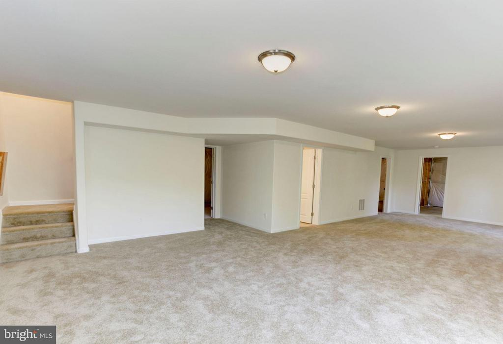 Expansive recreation room - 379 MOUNT HOPE CHURCH RD, STAFFORD