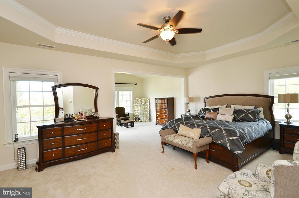 Bedroom (Master) - 26605 MARBURY ESTATES DR, CHANTILLY