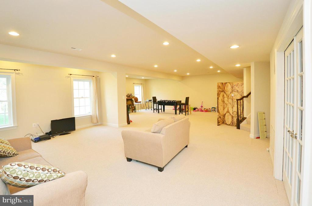 Basement - 26605 MARBURY ESTATES DR, CHANTILLY