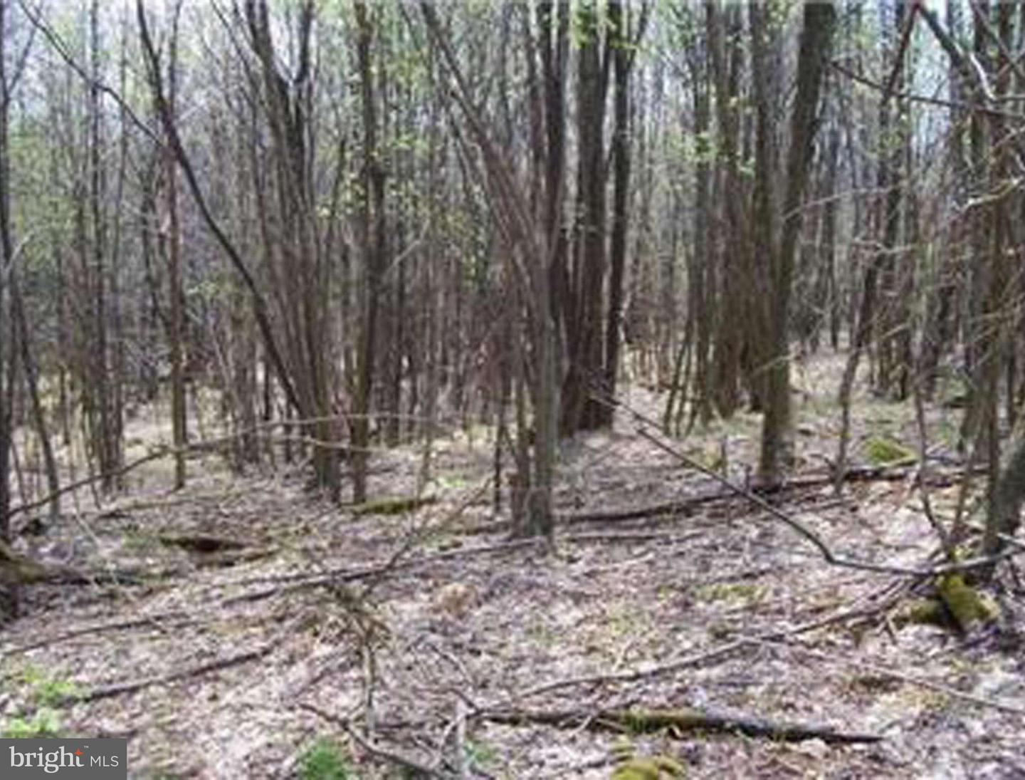 Land for Sale at 19 Hoye Crest Road Oakland, Maryland 21550 United States