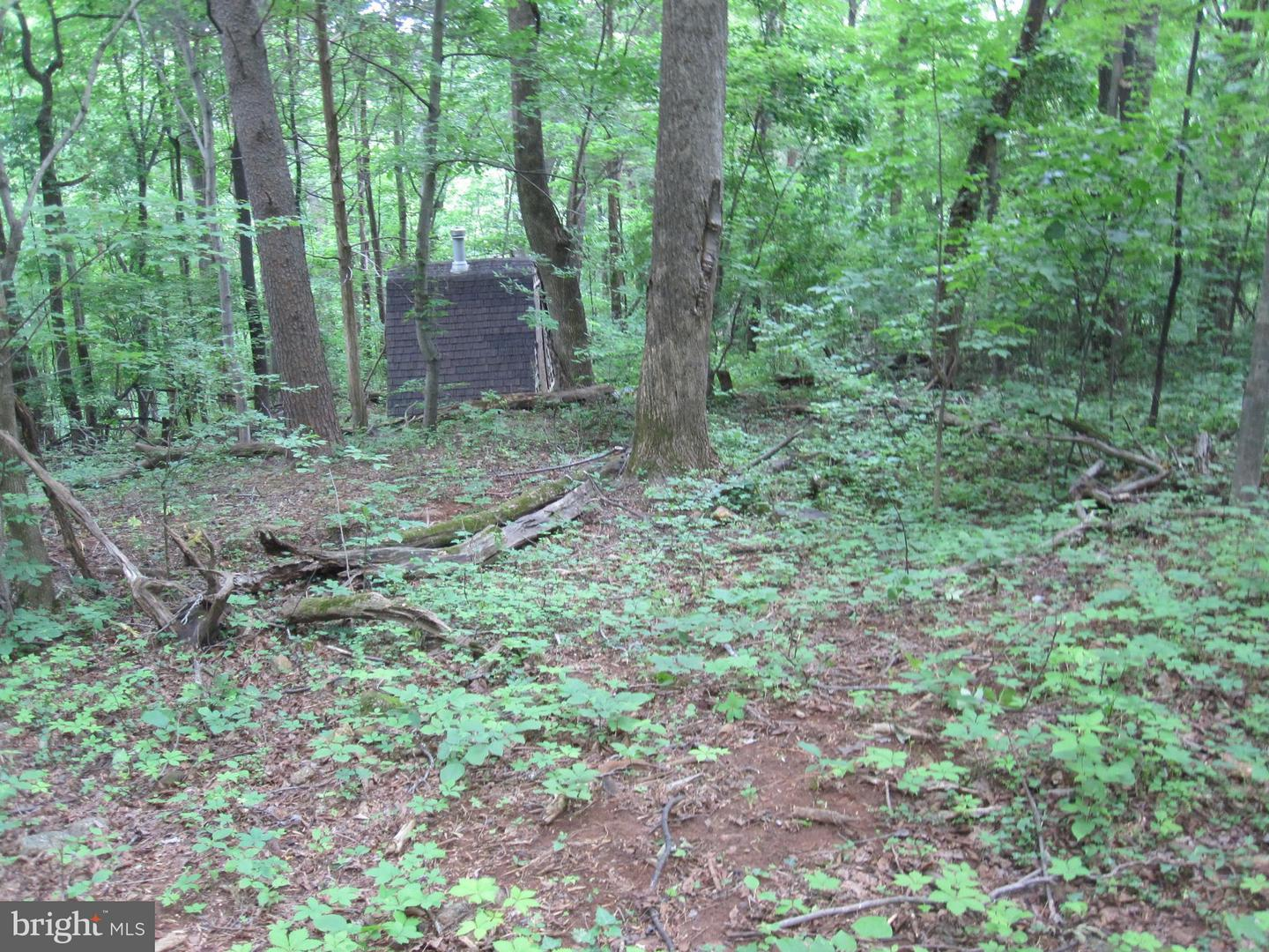 Land for Sale at Chimney Hollow Road Syria, Virginia 22743 United States