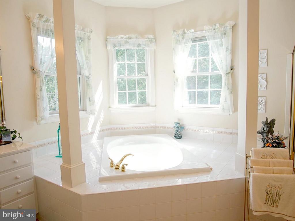 Soaking tub, separate shower - 16952 OLD SAWMILL RD, WOODBINE