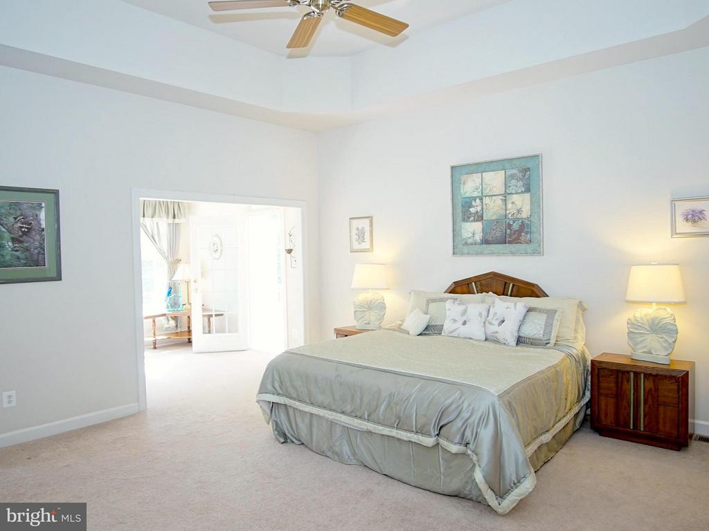 Main level Owners Suite w/ tray ceiling - 16952 OLD SAWMILL RD, WOODBINE