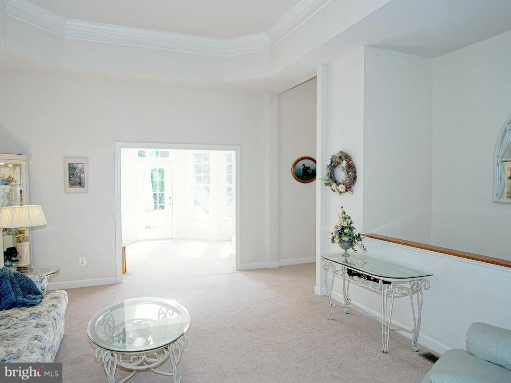 Living Room with tray ceiling - 16952 OLD SAWMILL RD, WOODBINE