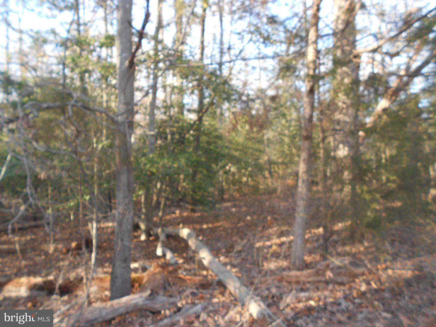 Land for Sale at 0 Rogers Clark Blvd Bowling Green, Virginia 22427 United States