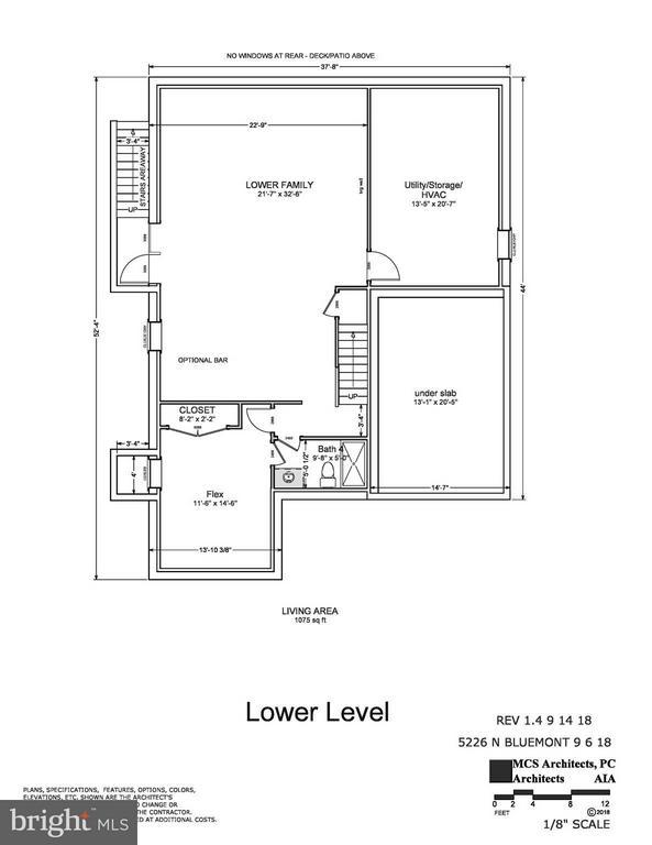 Lower Level - 5226 BLUEMONT DR, ARLINGTON