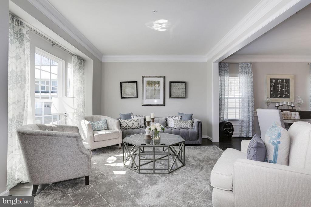 Living Room - 4426 CAMLEY WAY, BURTONSVILLE