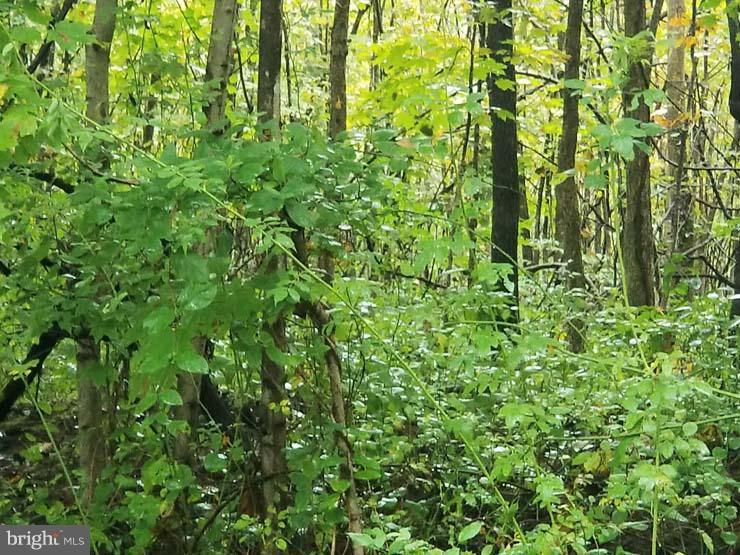 Land for Sale at Mifflin, Pennsylvania 17058 United States