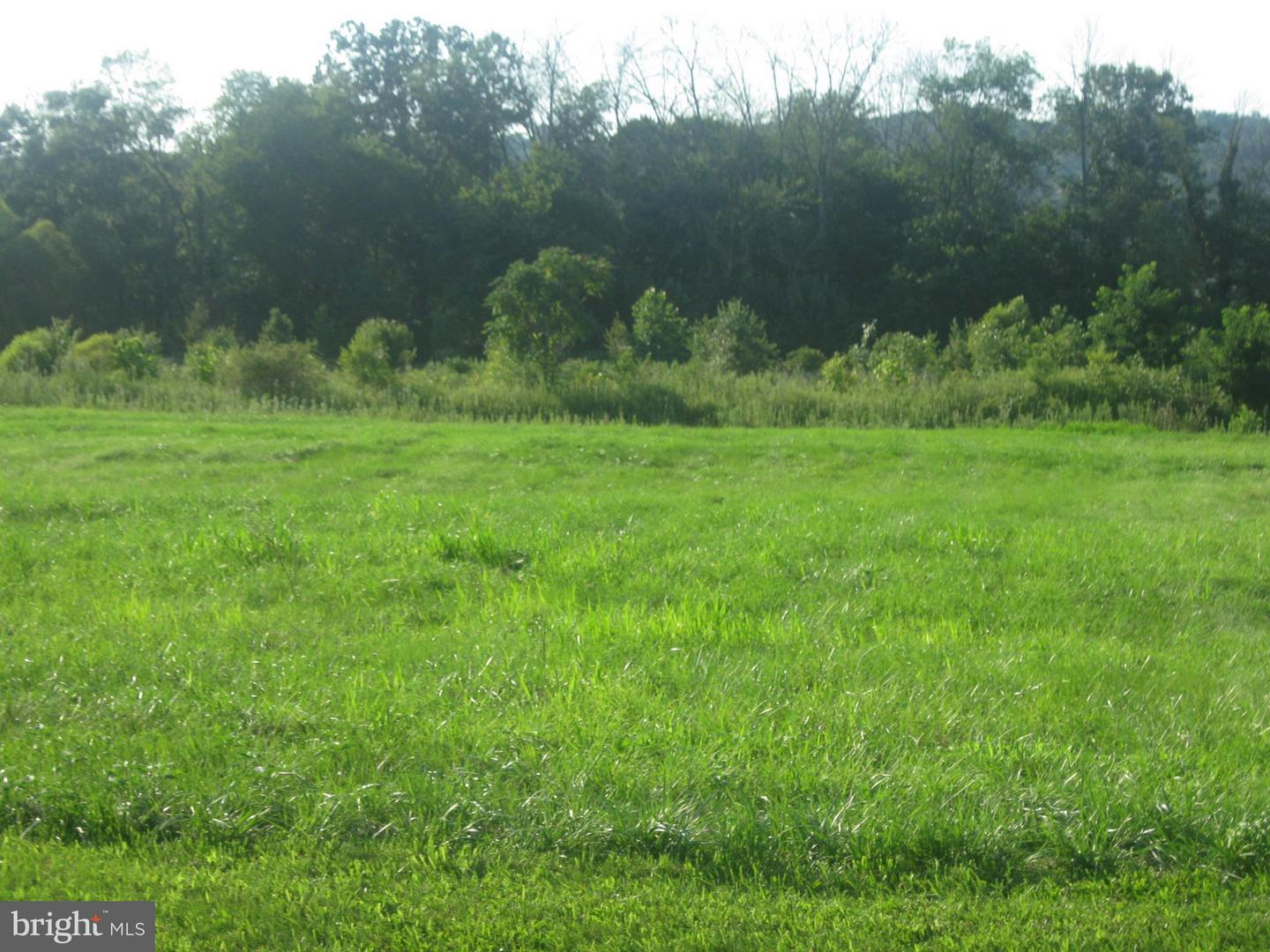 Land for Sale at North Welty Lot10 C Waynesboro, Pennsylvania 17268 United States