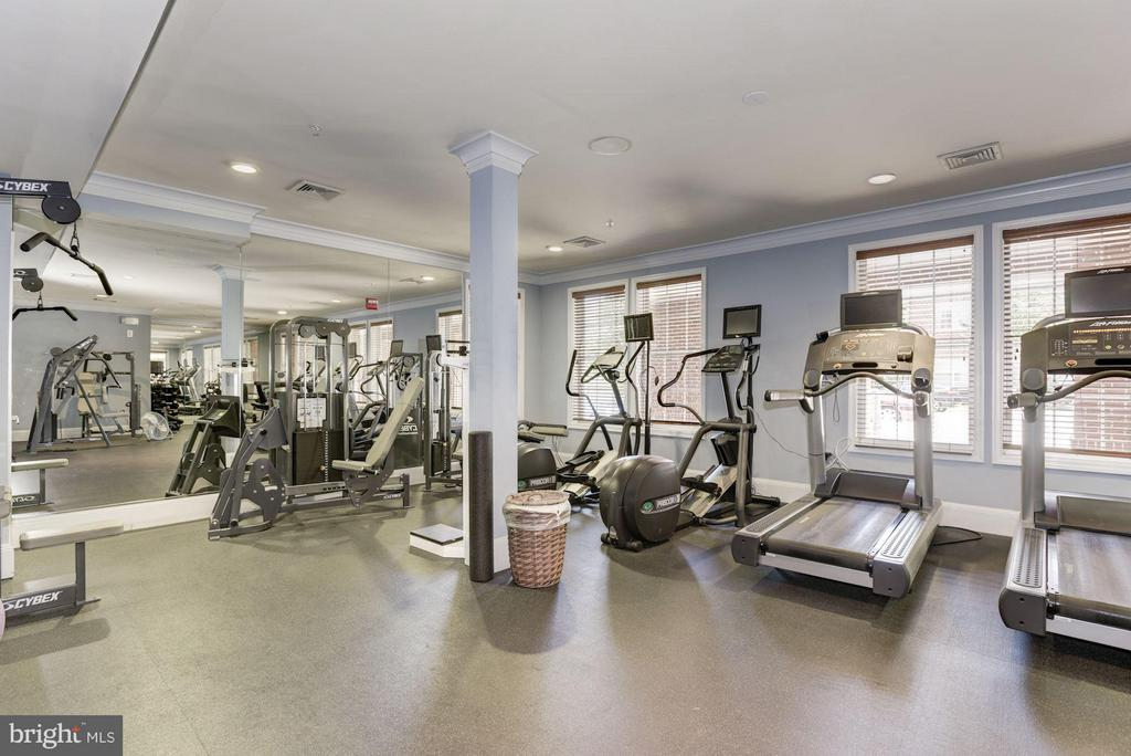 COMMUNITY FITNESS CENTER WITH CARDIO and WEIGHTS! - 2465 ARMY NAVY DR #1-210, ARLINGTON