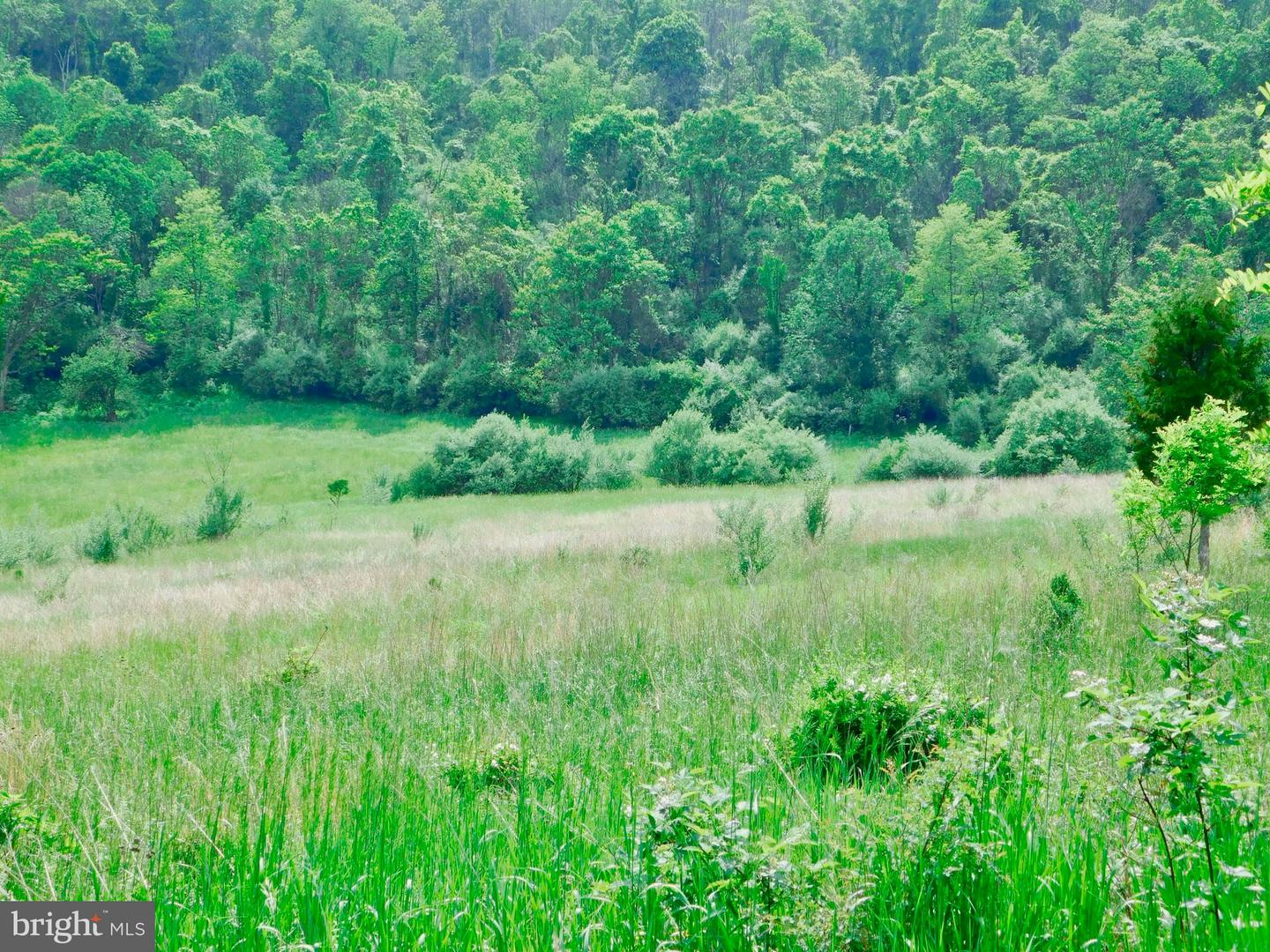 Land for Sale at 275 Smith Rd Keyser, West Virginia 26726 United States