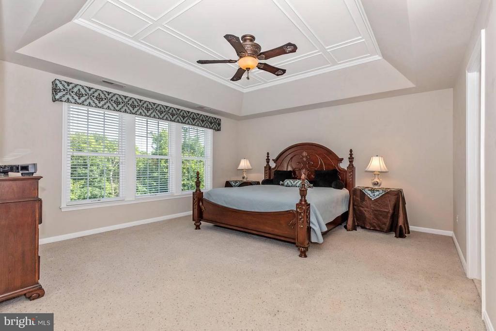Bedroom (Master) - 6327 MEANDERING WOODS CT, FREDERICK