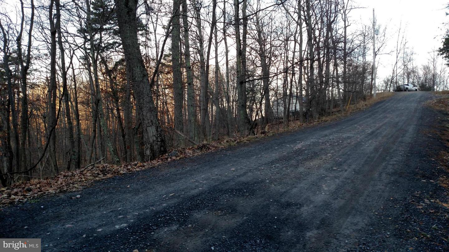 Land for Sale at 0 Brandy Rd Front Royal, Virginia 22630 United States