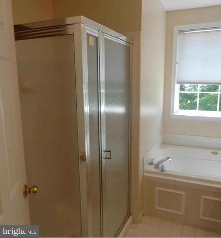 Master Bedroom Shower-Soaking Tub - 103 ENGLISH CT SW, LEESBURG