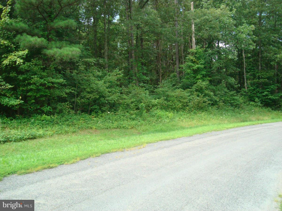 Additional photo for property listing at Belmont Ln  Louisa, Virginia 23093 United States