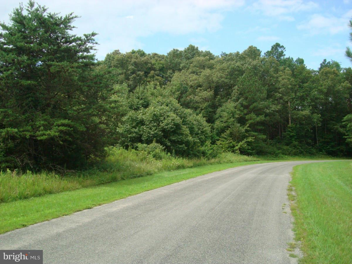 Land for Sale at Belmont Ln Louisa, Virginia 23093 United States
