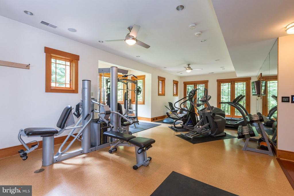 Gym with with cork floors and bright windows - 8922 JEFFERY RD, GREAT FALLS