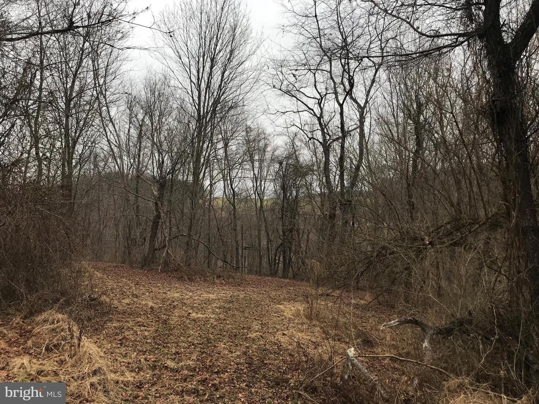 Land for Sale at 2 Iron Bridge Rd Stewartstown, Pennsylvania 17363 United States