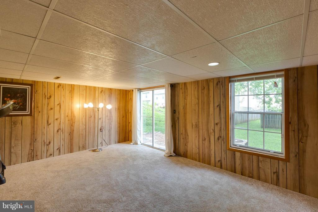 Large lower level rec room walkout level! - 20209 THUNDERHEAD WAY, GERMANTOWN