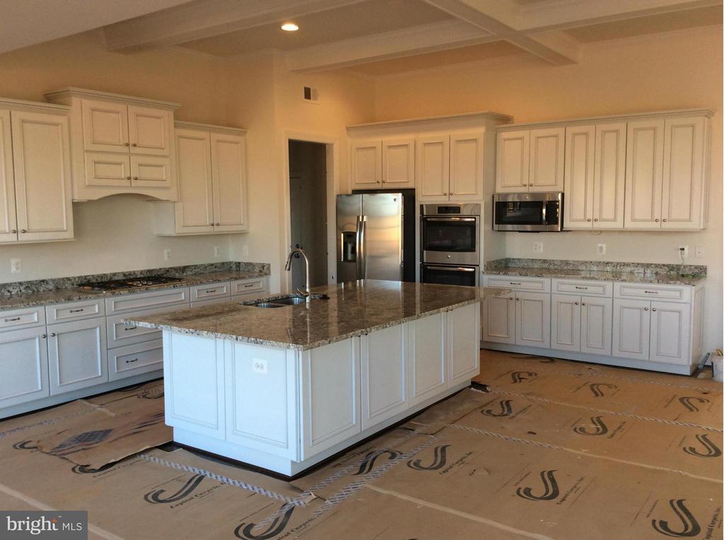 Kitchen - 15921 EMERSON MANOR CT, HAMILTON