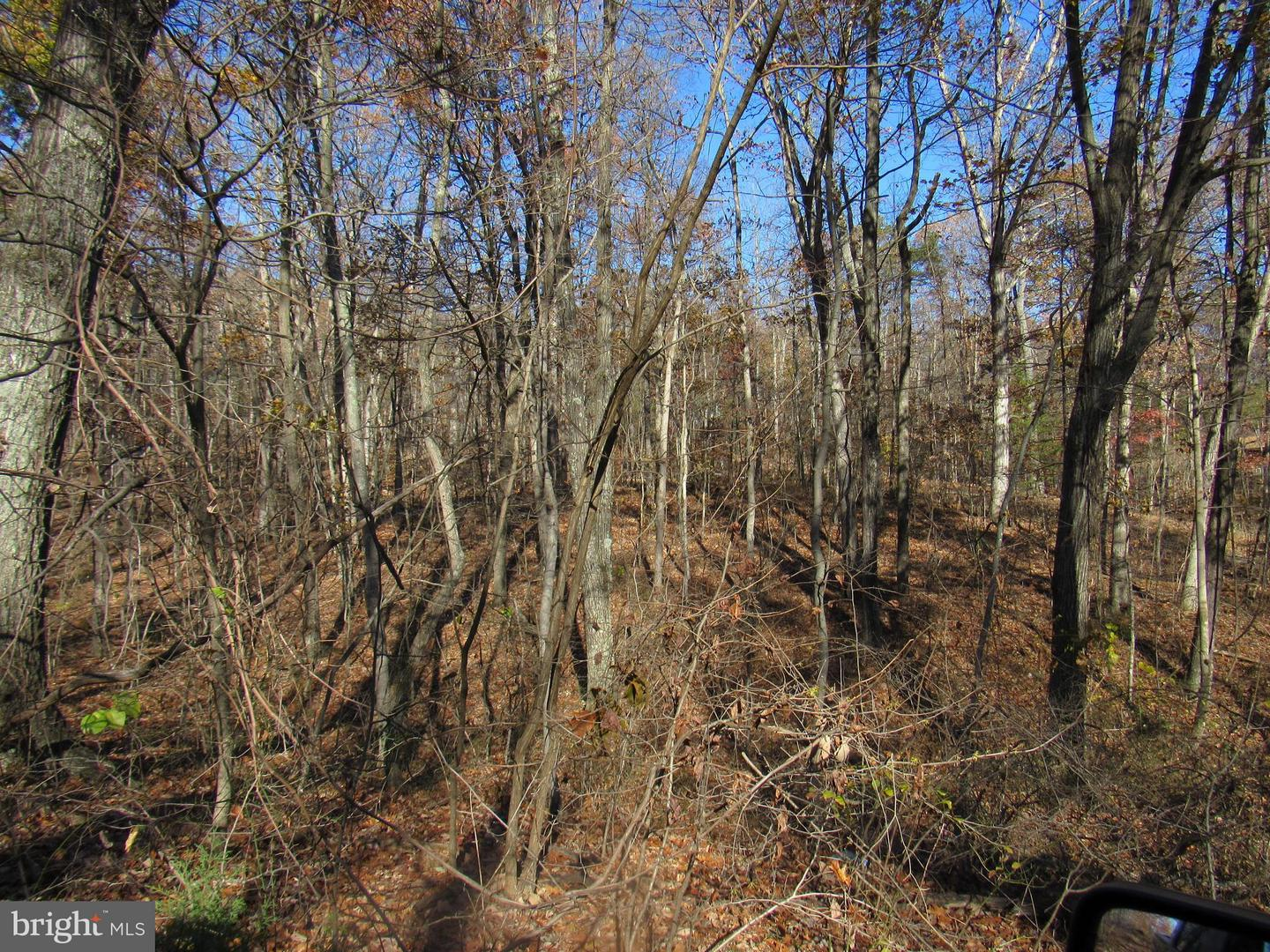 Land for Sale at Dogwood Farm Front Royal, Virginia 22630 United States