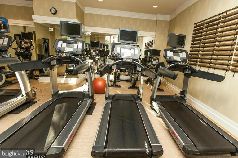 Gym/Fitness Room - 8220 CRESTWOOD HEIGHTS DR #203, MCLEAN