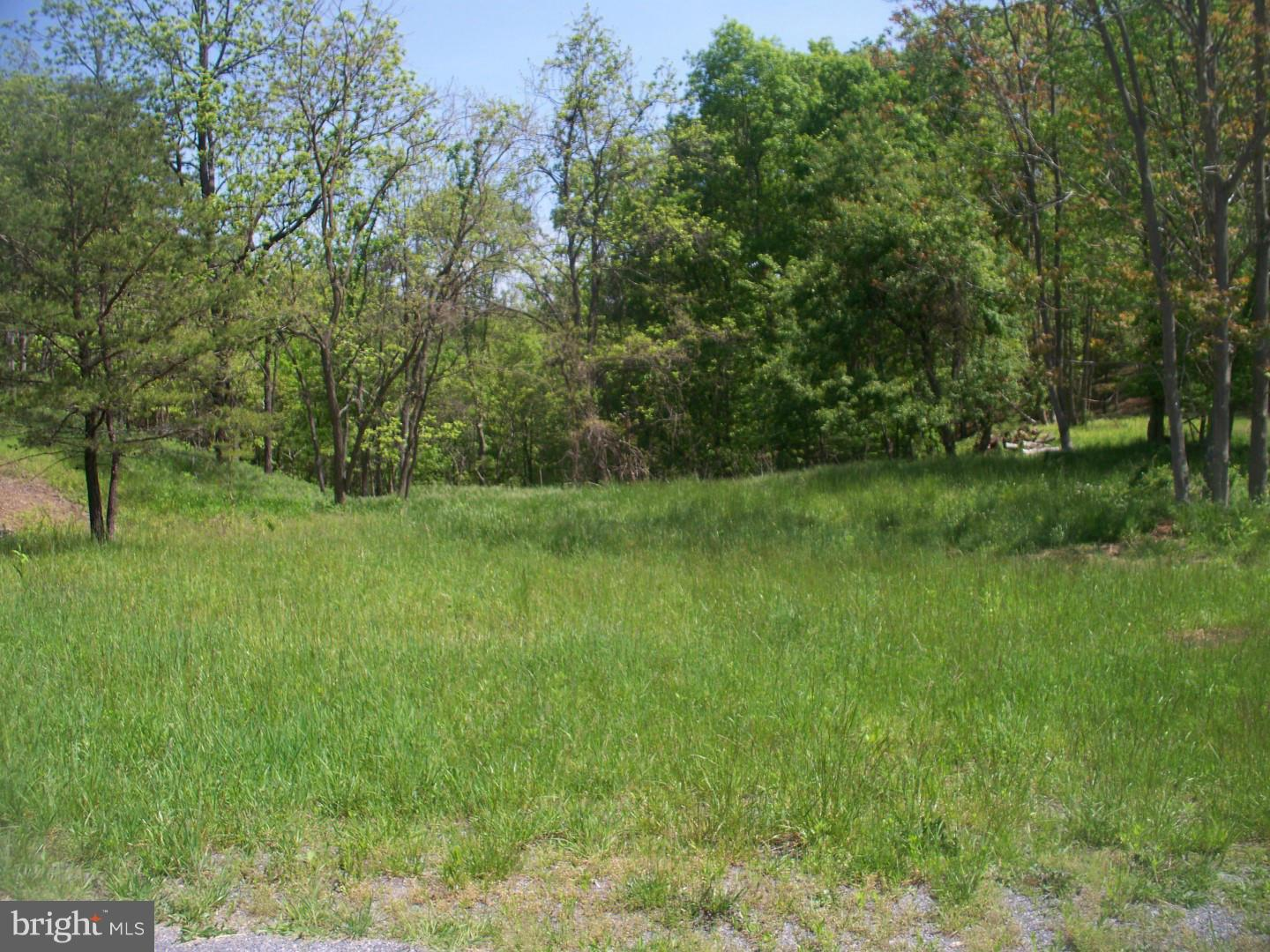 Land for Sale at Malcolm Rd Oldtown, Maryland 21555 United States
