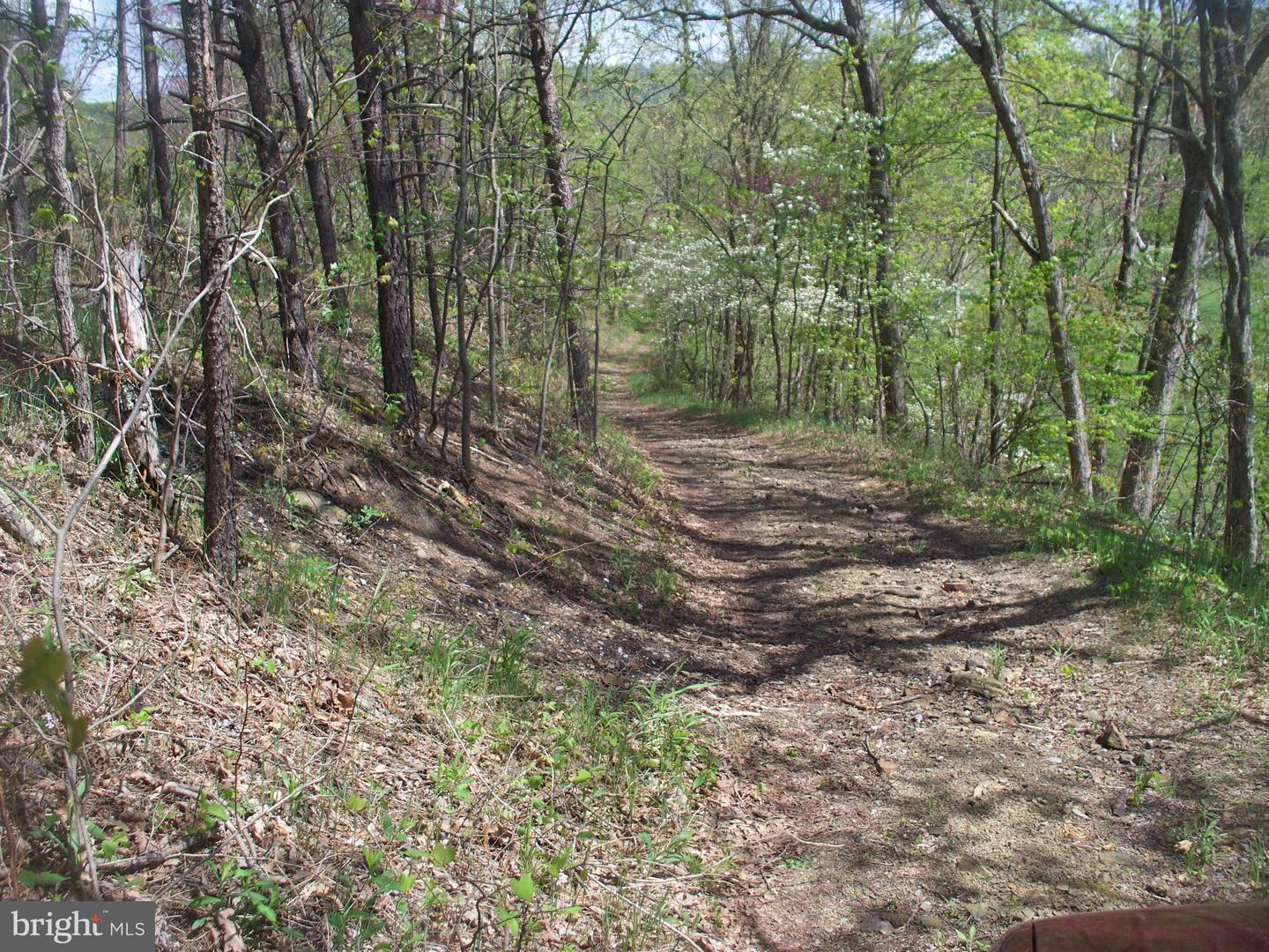Additional photo for property listing at Plum Run Rd  Ridgeley, West Virginia 26753 United States