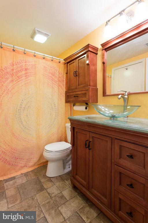 Bathroom Renovated in 2015! - 2586 ARLINGTON MILL DR S #E, ARLINGTON