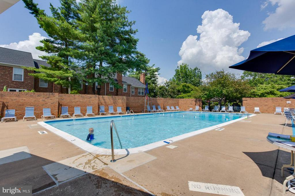 Community Swimming Pool - 2586 ARLINGTON MILL DR S #E, ARLINGTON