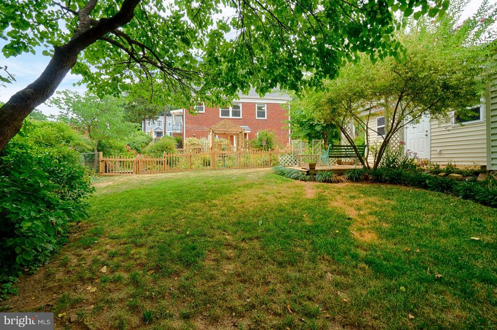 Fenced grass yard; wooded yard and parkland beyond - 1404 RANDOLPH ST, ARLINGTON