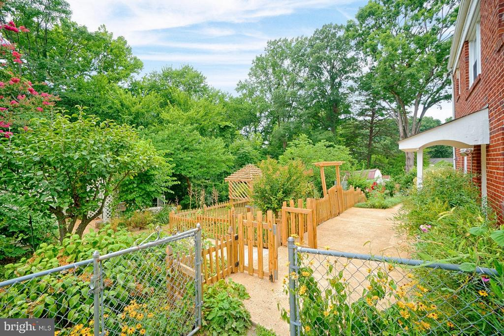 Fenced rear yard with concrete pathways - 1404 RANDOLPH ST, ARLINGTON