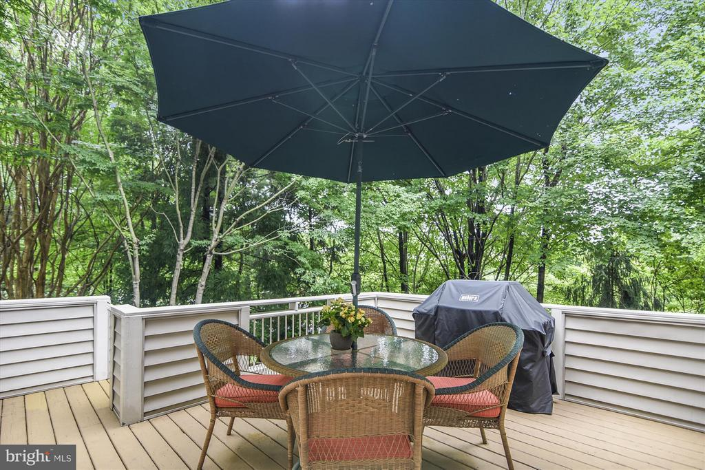 Deck surrounded by beautiful trees - 1338 RED HAWK CIR, RESTON