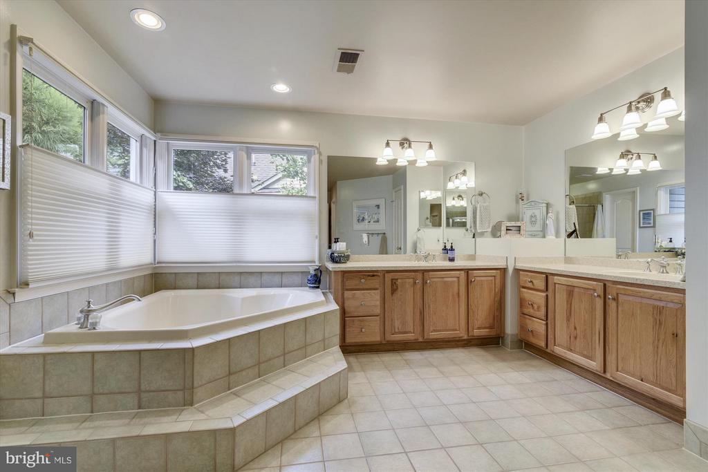 Master Bathroom with Hickory Cabinetry - 1338 RED HAWK CIR, RESTON