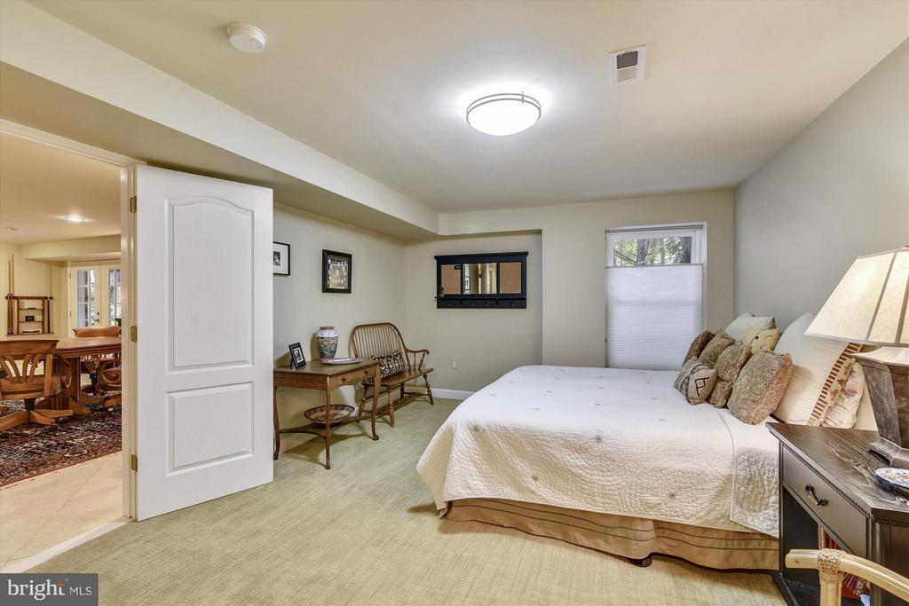 Fifth Bedroom in the Lower Level - 1338 RED HAWK CIR, RESTON