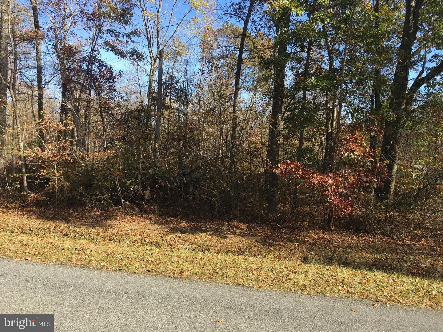 Land for Sale at 44 Big Woods Big Woods Rd Barclay, Maryland 21607 United States