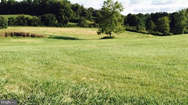 Beautiful gentle lot backs to trees - 2650 PARK MILLS RD, ADAMSTOWN