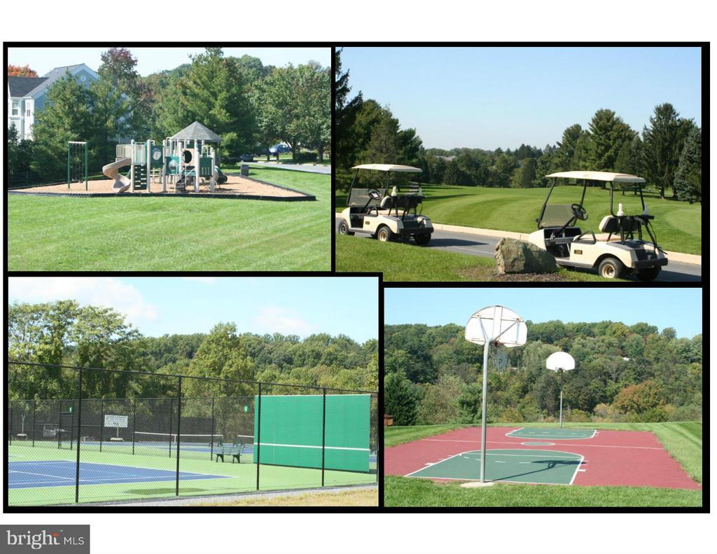 Tot Lots, Golf, Basketball, Tennis and more! - 6718 OAKRIDGE RD, NEW MARKET