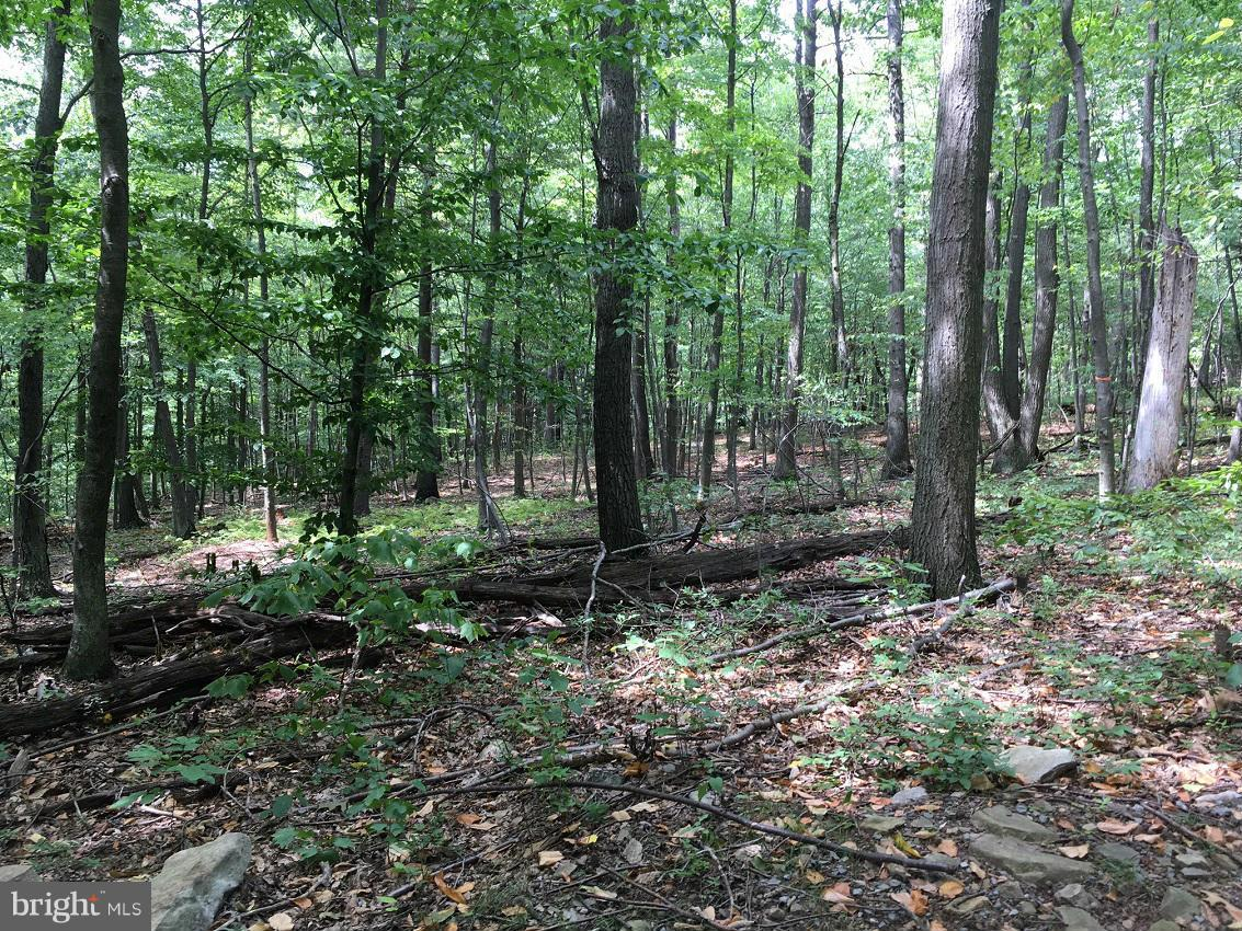 Land for Sale at Old Plank Rd Huntingdon, Pennsylvania 16652 United States