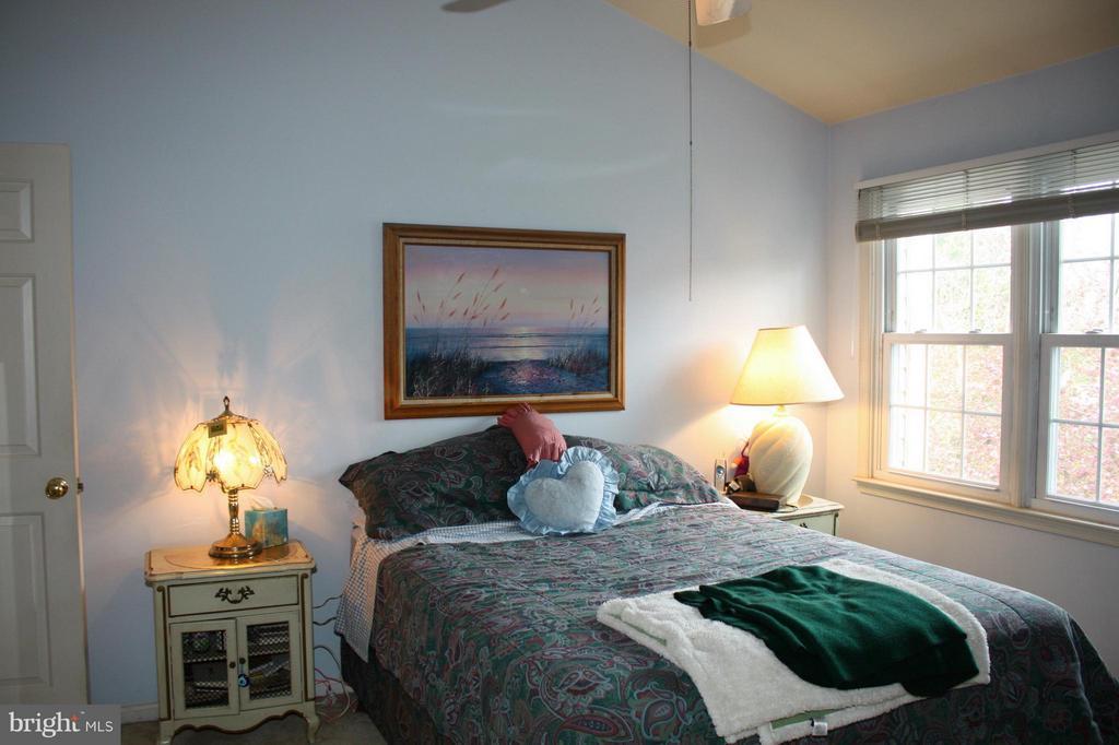 Bedroom (Master) - 20409 IVYBRIDGE CT, MONTGOMERY VILLAGE