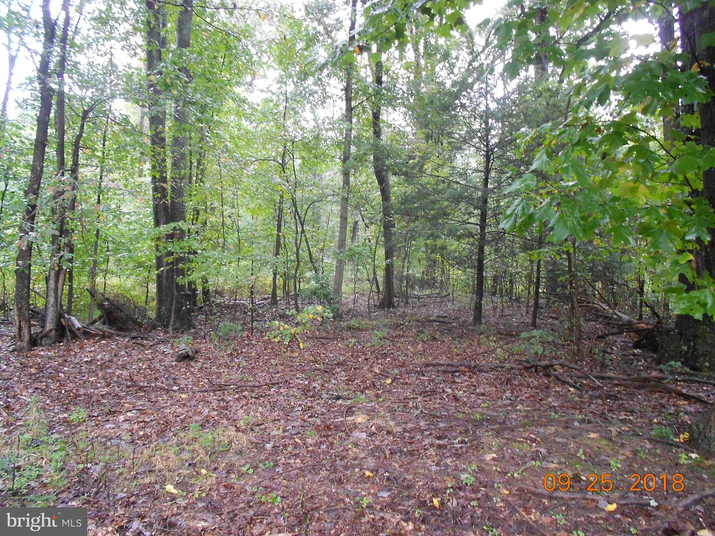 Land for Sale at New Bloomfield, Pennsylvania 17068 United States