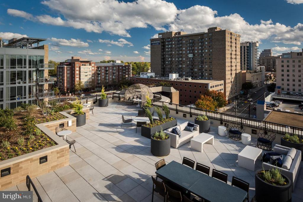 Outdoor entertainment space - 8302 WOODMONT AVE #803, BETHESDA