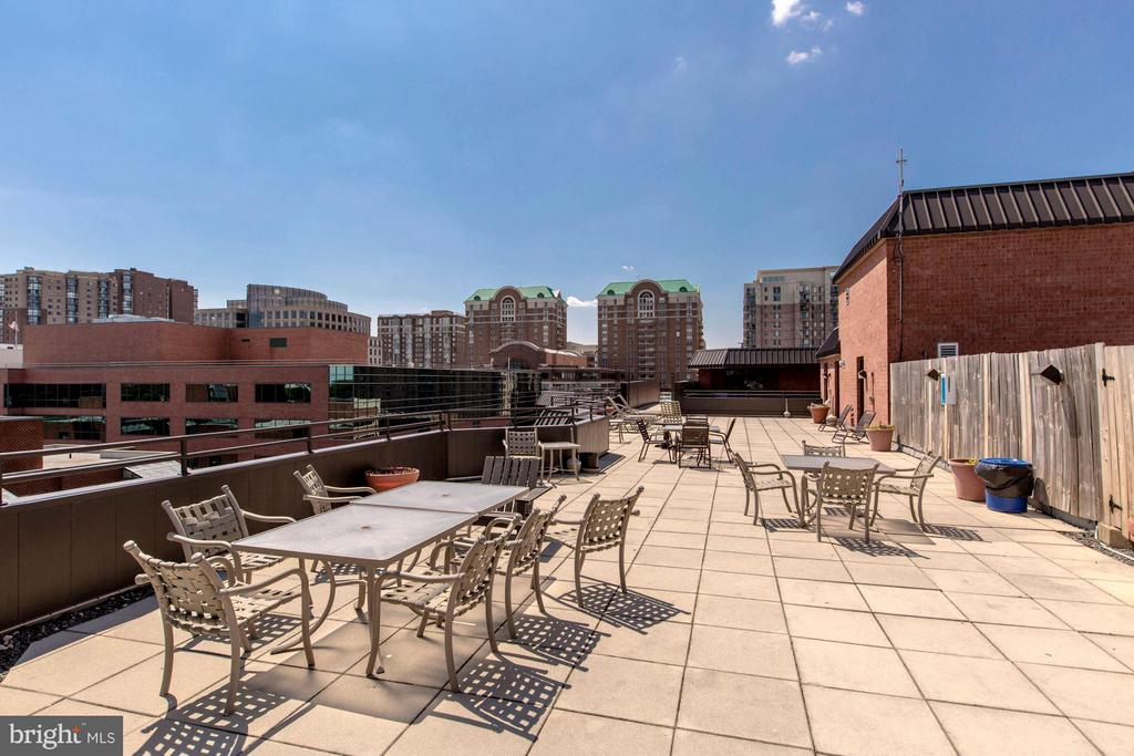 ROOFTOP SUNDECK - PERFECT FOR ENTERTAINING! - 1001 VERMONT ST N #710, ARLINGTON