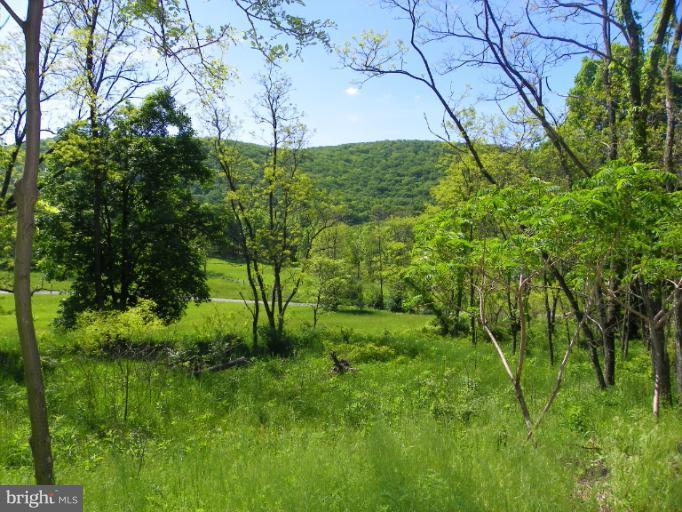 Land for Sale at Nancy Hanks New Creek, West Virginia 26743 United States