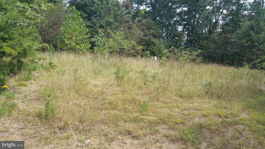 Land for Sale at 99 Pin Oak Rd Paw Paw, West Virginia 25434 United States