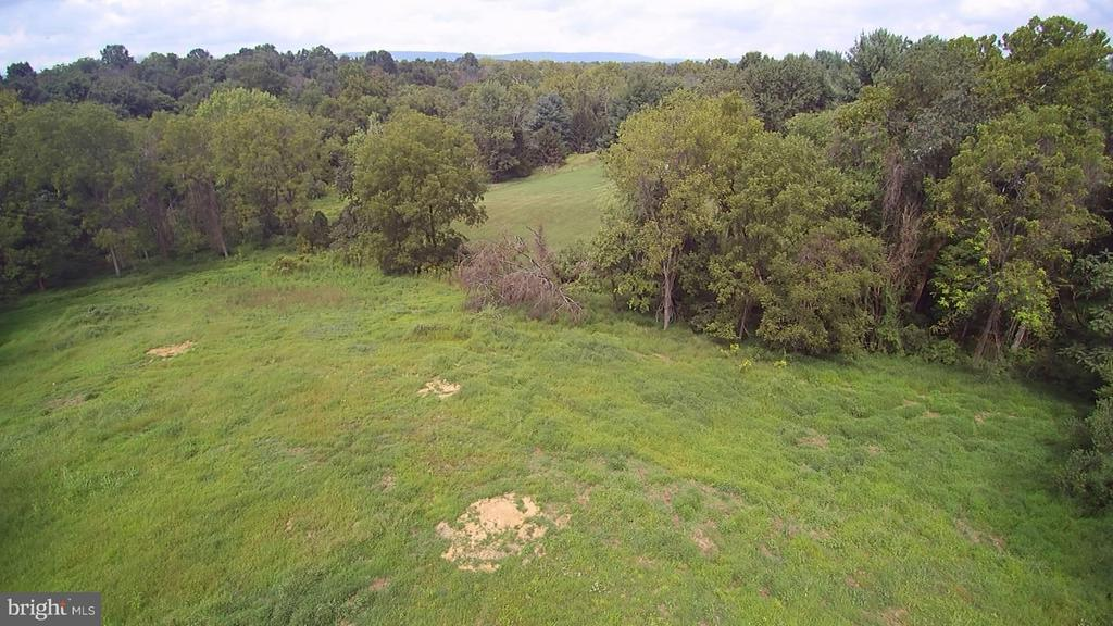 Private acreage with creek - 36942 WALNUT PARK LN, PURCELLVILLE
