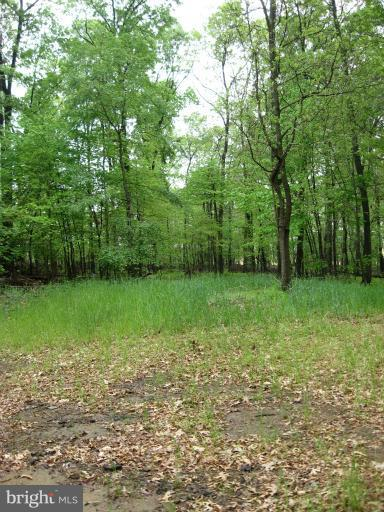 Additional photo for property listing at Leib Rd  Parkton, Maryland 21120 United States