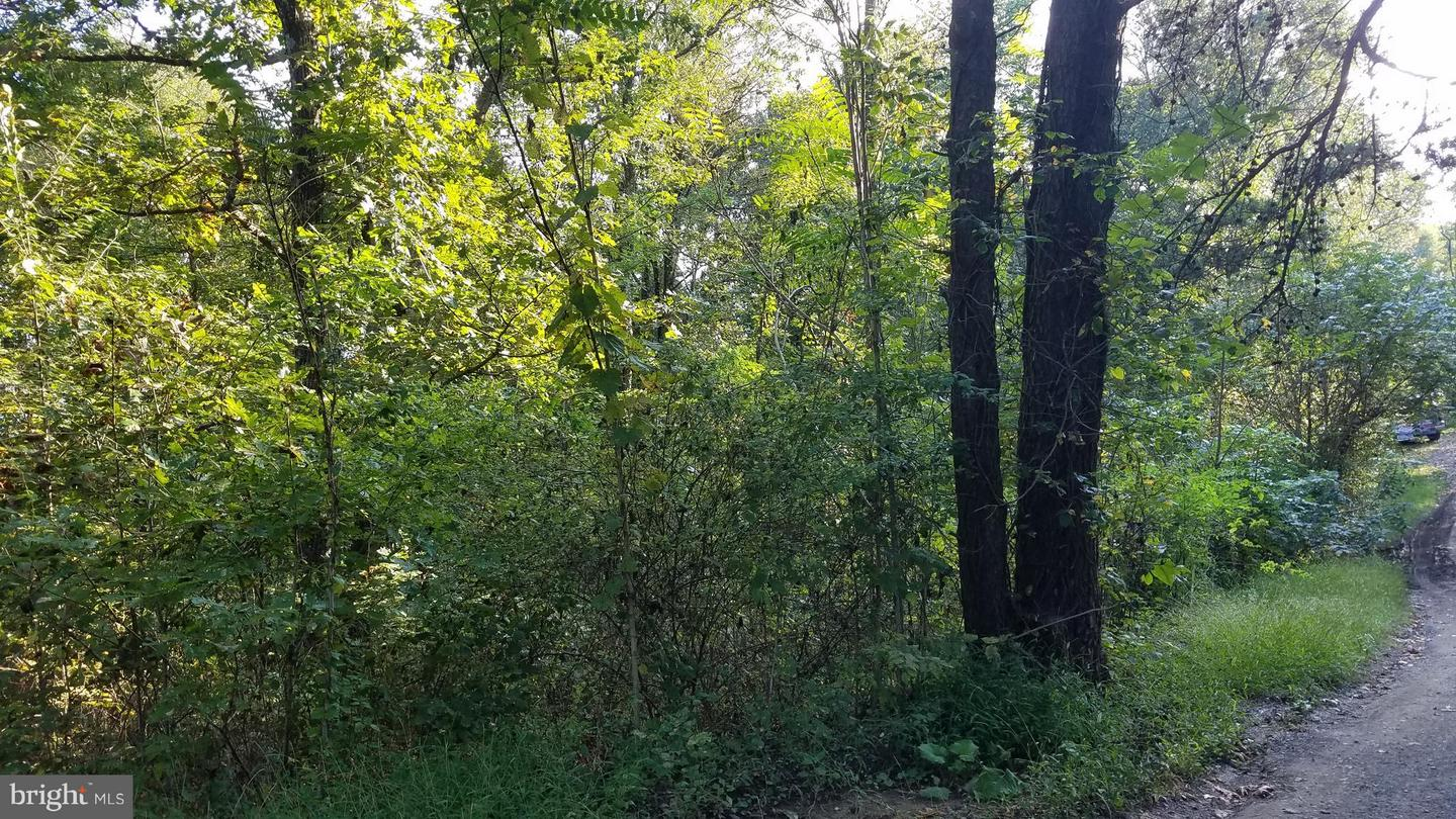 Land for Sale at Crestview Mountain Rd Augusta, West Virginia 26704 United States